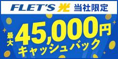 法人向けフレッツ光&個人向け光コラボ【キャッシュバック特典有り!】