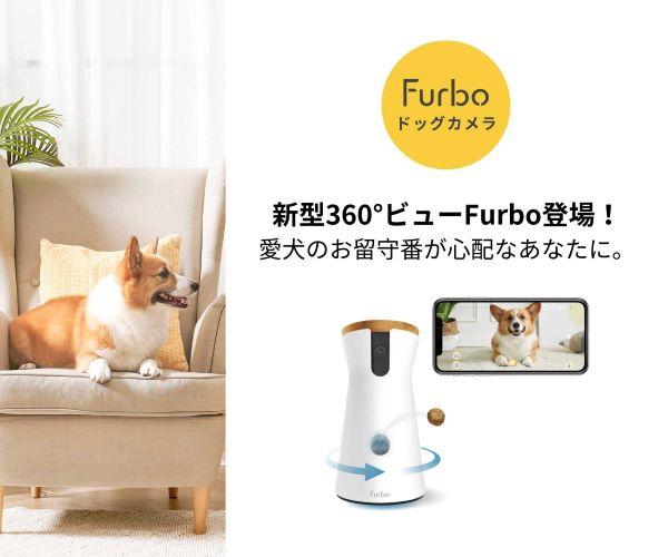 心配な愛犬のお留守番の悩みをFurboドッグカメラで解消して