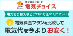 最大30000円現金キャッシュバック!【電気チョイス】(法人)