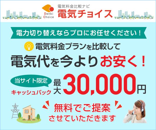 当サイト限定 最大30000円現金キャッシュバック!【電気チョイス】