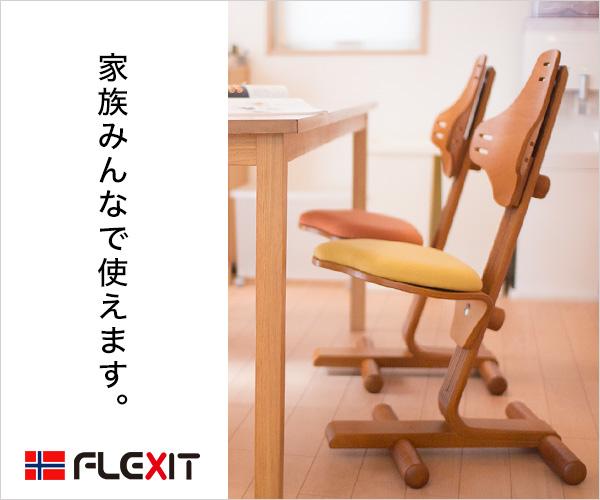 16万人ご愛用!ラクに姿勢がよくなる椅子バランスチェア【サカモトハウス】