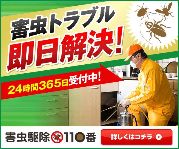 ゴキブリ・ダニ・シロアリ・スズメバチ どんな害虫でも対応します!