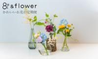 かわいいお花の定期便 &flower